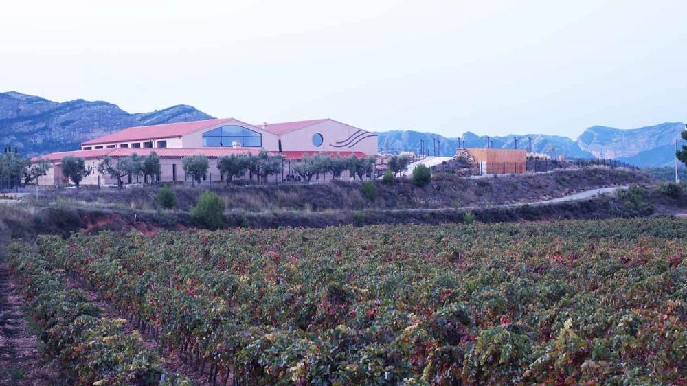 celler-vinyes-convent-horta-sant-joan-terra-alta-visites-enoturisme-catalunya 01