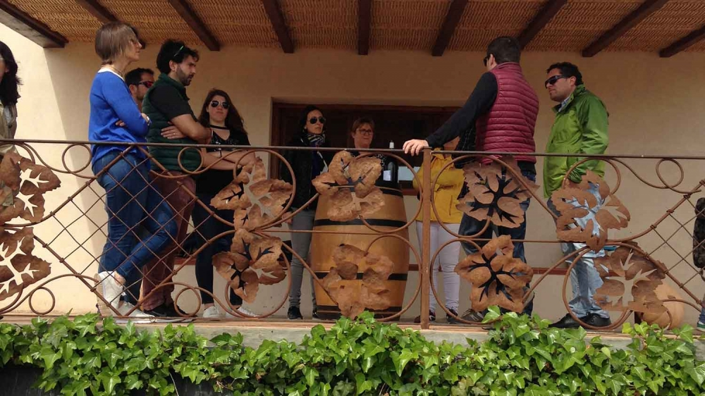 Sant Josep Vins Bot Terra Alta 04