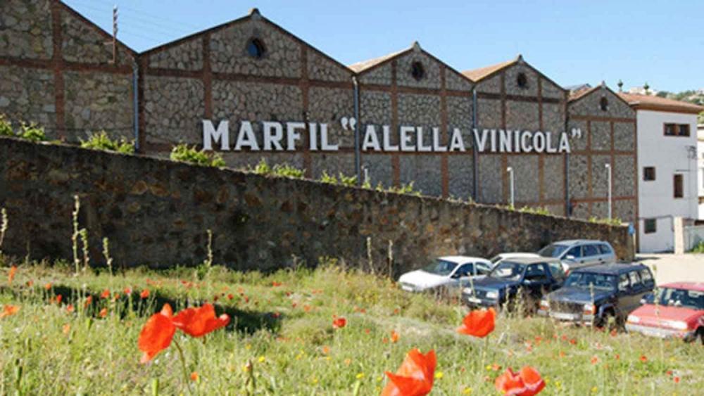 Alella Vinicola Marfil 05
