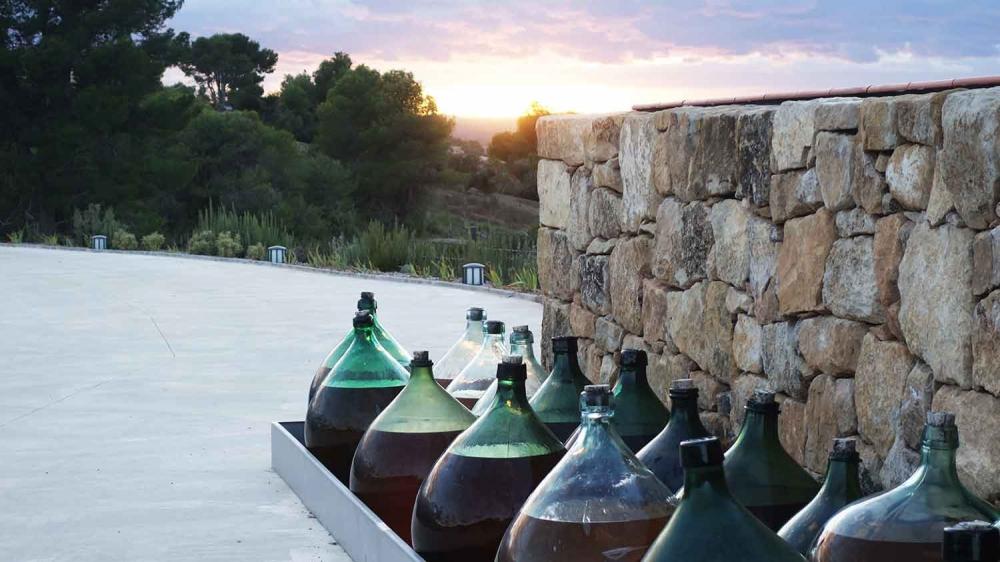 celler-vinyes-convent-horta-sant-joan-terra-alta-visites-enoturisme-catalunya 06